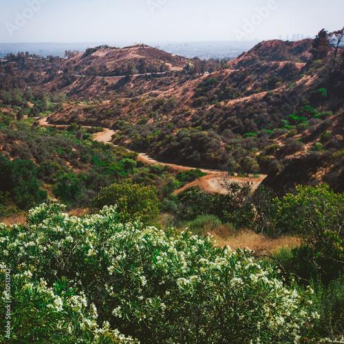 Firebreak Trail to Griffith Observatory, Los Angeles Fototapet