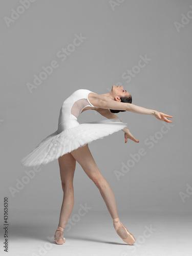 Fotografiet Young beautiful skinny ballerina is posing in studio