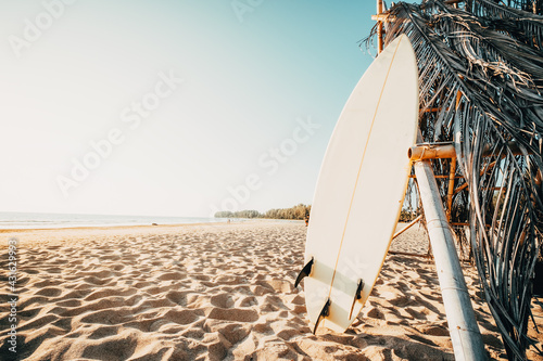 Surfboard on beach. Seascape of summer beach with sea and blue sky background.
