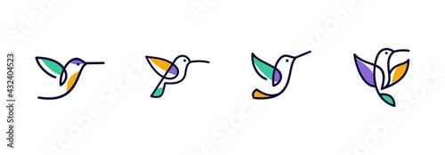 Fotografia vector line art of abstract colorful hummingbird, colibri wall art design, minim