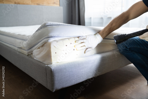 Canvas Bed Bug Infestation And Treatment Service