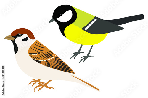 Canvas-taulu Field Sparrow and Great Tit vector isolated