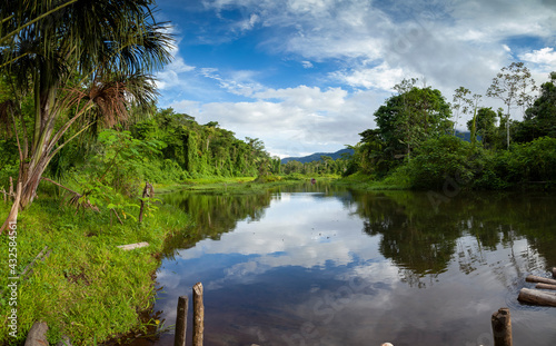 Fototapeta Amazon rainforest, Peru, panoramic landscape of the tropical jungle, and biosphere reserve located in river Madre de Dios, Manu National Park, full of diverse ecosystems such as lowland rainforests