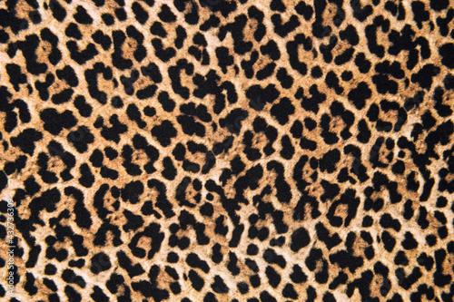 Canvas Print Animal print textile texture. Leopard fur background