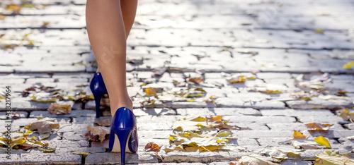 Fotografie, Obraz Woman legs and high heels walking at the street
