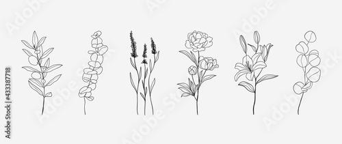 Leinwand Poster Minimal botanical hand drawing design for logo and wedding invitation