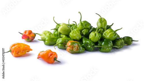 Fotografía habanero chili peppers, ripe and unripe hot variety of capsicum chinense, green,