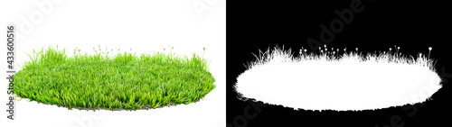 Fotografia green grass turf isolated on white background with alpha mask for easy isolation