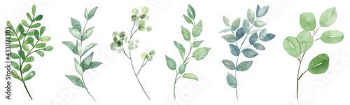 Fényképezés Leaves watercolor set