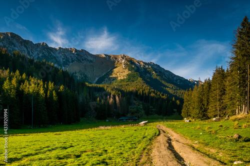 Obraz na płótnie Hiking on Piatra Craiului mountain ridge