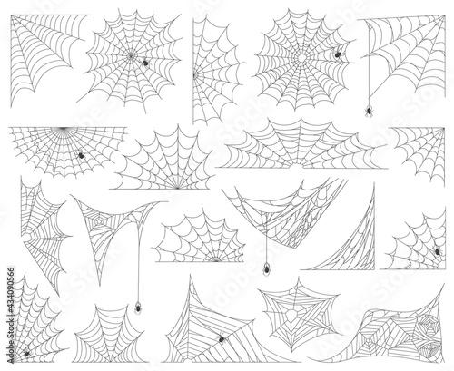 Fotografie, Obraz Halloween spider web