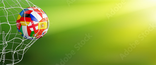 Tela green soccer background with ball in goal