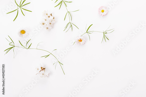 Fotografija Spring frame of small flowers and daisy, floral arrangement
