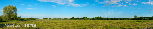 Fotografie, Obraz Panorama of a Large mown meadow in front of forest