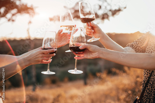 Tela Friends clinking glasses with wine during picnic