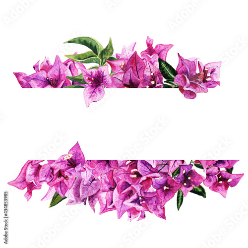 Fotografía Frame with watercolor bougainvillea flowers isolated on white background