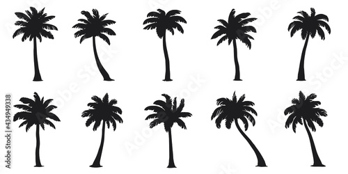 Wallpaper Mural various coconut palm silhouettes on the white background
