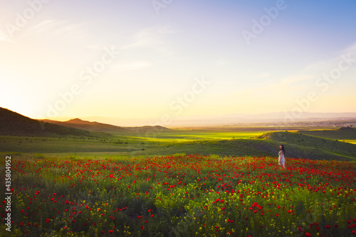 Fotografie, Obraz Young woman standing in Green valley and poppy field, springtime landscape in Georgia