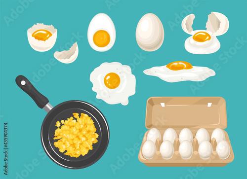 Fényképezés Set of white chicken eggs