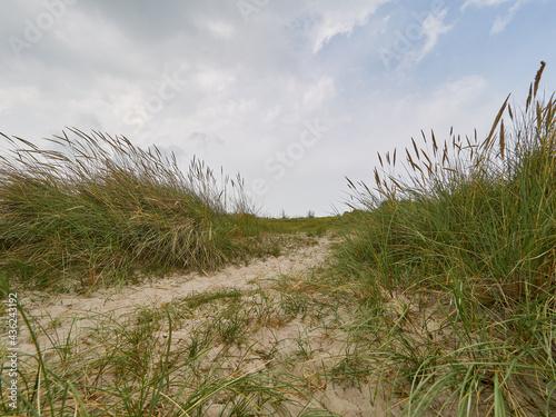 Schillig, Ostfriesland, Nordsee, Northern Sea