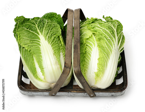 Chinese cabbage on white background Fotobehang