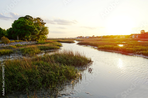 Wallpaper Mural View of coastal homes along the marsh waterways in the Low Country near Charlest