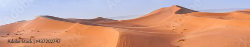 Foto Sand Dune in the Sahara / In the Sahara Desert, sand dunes to the horizon, Morocco, Africa