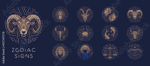 Photo Zodiac signs on dark background