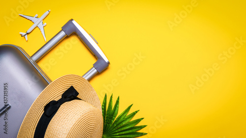 Fotografie, Obraz Suitcase, sunglasses with palm leaves and straw hat, white plane in travel composition on yellow background