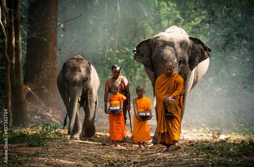 Fotografija Thai monks walking in the jungle with elephants