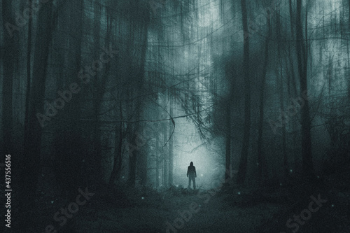 Canvas Print A spooky hooded figure, standing in a winter forest