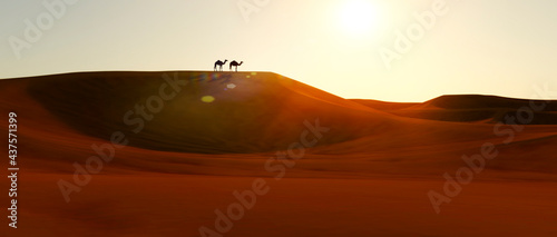 Leinwand Poster Dromedaries on the dunes at sunset in a desert