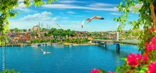 Canvas Print Flowers in Istanbul