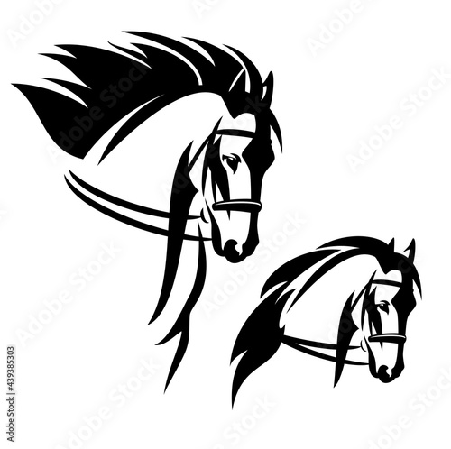 Valokuva bridled horse with flying mane profile head black and white vector outline portr