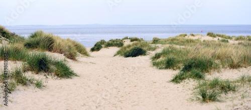 Valokuva sand dunes and beach