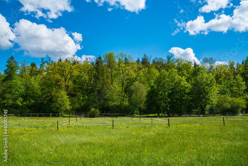 Fényképezés Germany, Green nature landscape at edge of the forest with paddock and fence for