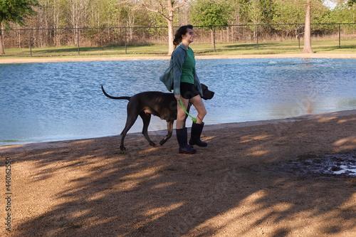 Fotografia dog park, girl with dog, great dane, pond, water, dog fetching