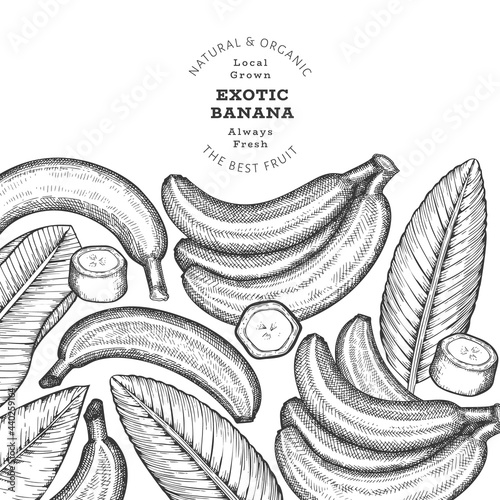 Fotografia Hand drawn sketch style banana banner