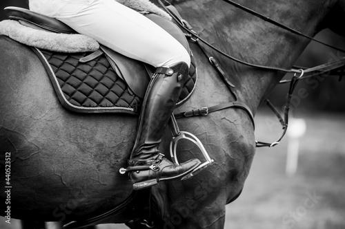 Slika na platnu Horse Jumping, Equestrian Sports, Show Jumping themed photo.