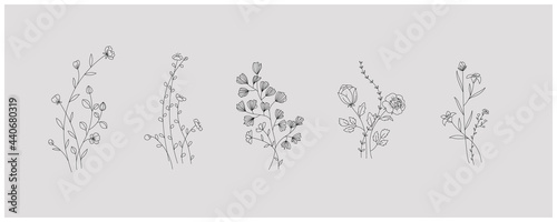 Fotografia minimal botanical graphic sketch line art drawing, trendy tiny tattoo design, fl