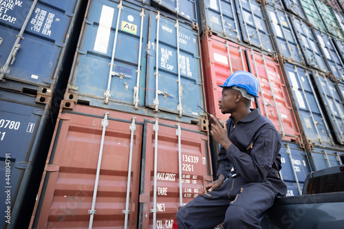 Stampa su Tela Black Inspector  Inspecting the Containers at the Port