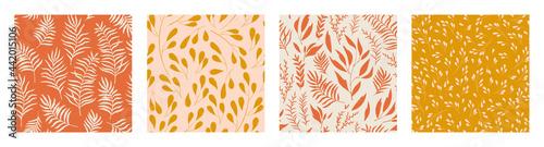Fényképezés Hand drawn botanical seamless pattern set