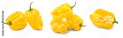 Cuadros en Lienzo Habanero chili yellow hot pepper isolated on white background