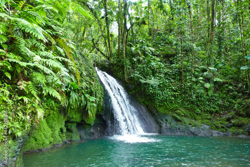 Obraz na plátně Crayfish Waterfall or La Cascade aux Ecrevisses, at the National Park of the french caribbean island Guadeloupe, West Indies