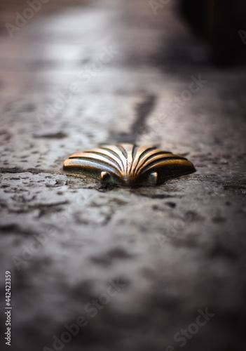 golden shell on the ground of the camino de santiago Fototapet