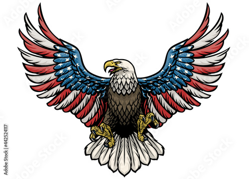 Photo eagle painted in american flag