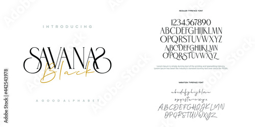 Fotografie, Obraz Abstract Fashion font alphabet