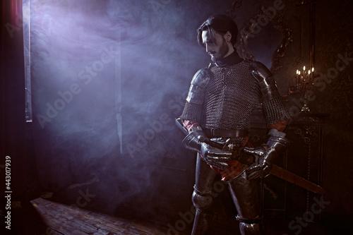Tela hero in armor