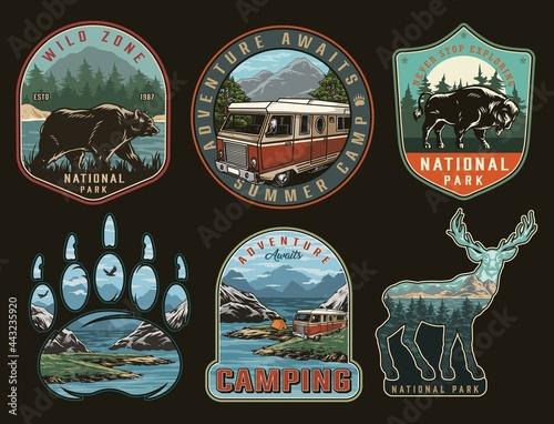 Fotomural Camping vintage colorful prints