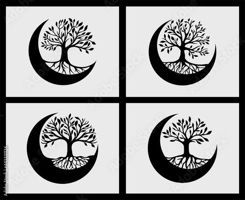 Fotografija Set of tree of life crescent moon decoration element